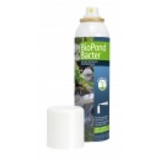 BioPond Bacter, bacterial concentrate